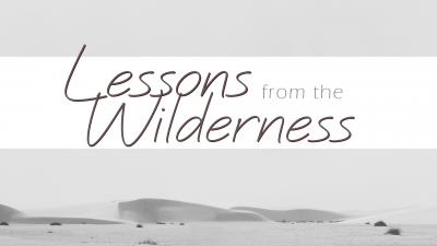 Lessons From the Wilderness Image